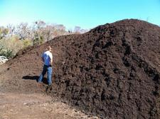 checking compost in field